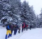 munte--iarna